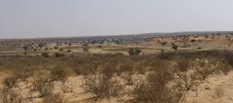 parc-transfrontalier-du-kgalagadi